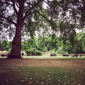 Yoga in St James's Park